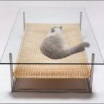 Благодаря прозрачной столешнице кошка украшает интерьер