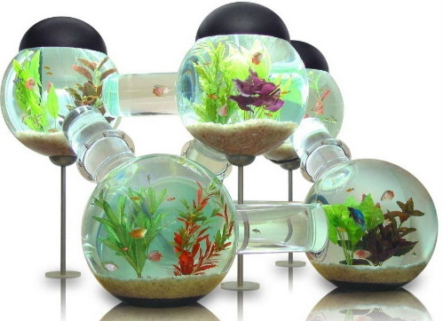 оригинальный аквариум акрил фото