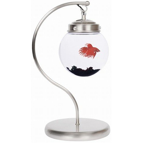 аквариум акрил фото