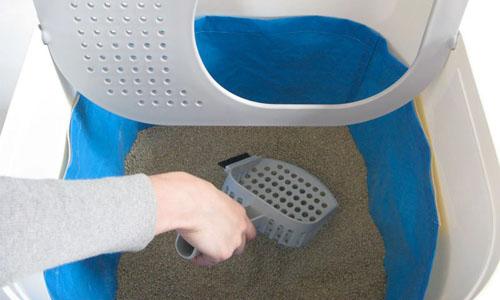 оригинальный лоток для кошачьего туалета фото