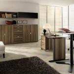 Домашний офис дизайн интерьера