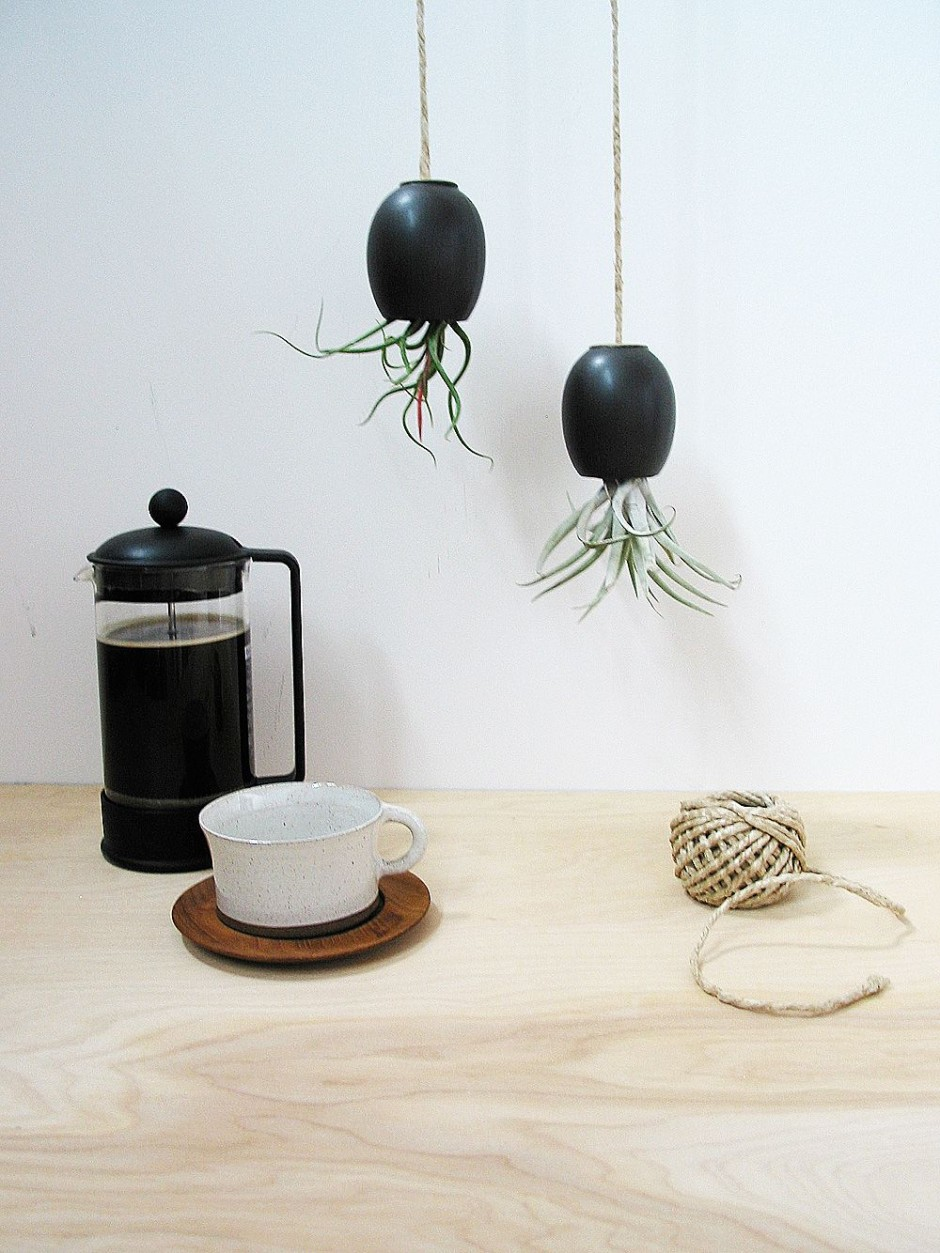 Горшки черного цвета с растениями растущими вниз