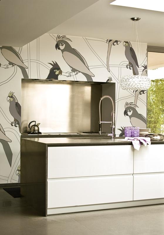 Настенные обои с попугаями