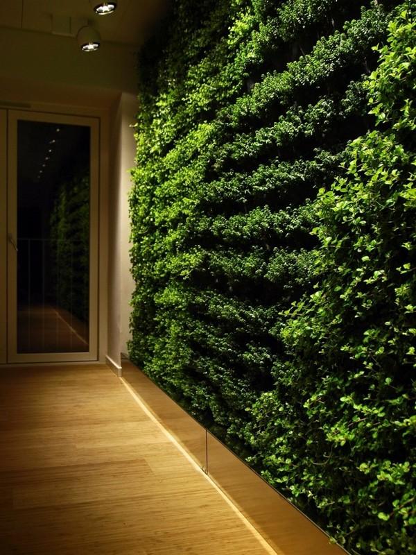 Живая зеленая стена в офисе
