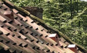 Керамический скворечник на крыше