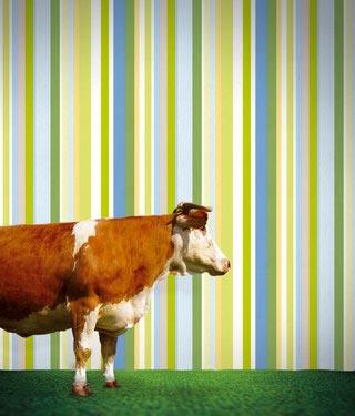 Обои на стены с вертикальными разноцветными полосками
