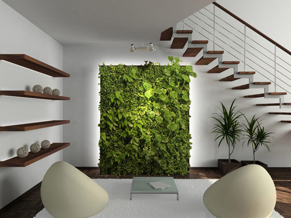 Вертикальные сады из комнатных растений