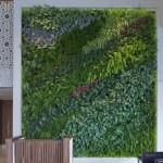 Пример живой зелёной стены в декоре интерьера