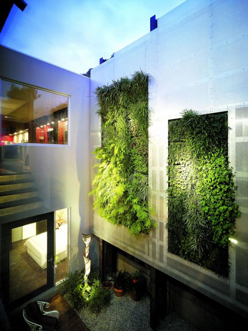 Вертикальное озеленение внутреннего дворика