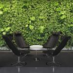 Вертикальное озеленение офисных помещений