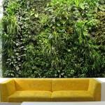 Вертикальные сады -- примеры использования в интерьере