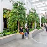 Вертикальное озеленение торгового центра