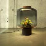 Настольная лампа с живыми цветами