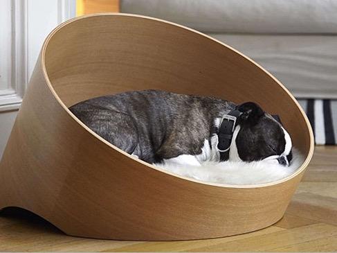 Дизайнерская ленжанка для домашних животных