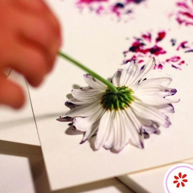 отпечаток цветка гравюра